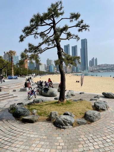 busan in south korea